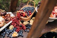 Frische Blaubeeren, Korinthen, Brombeeren, Moosbeeren und Himbeeren lizenzfreie stockfotografie
