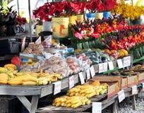 Frische Blumen auf großer Insel Lizenzfreies Stockfoto