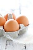 Frische braune Eier Stockfotografie