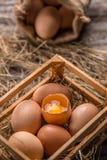 Frische braune Eier stockfoto