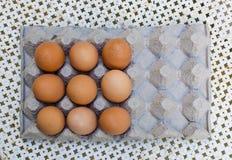 Frische braune Eier im Karton Stockbild