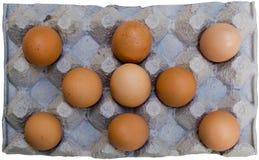 Frische braune Eier im Karton Lizenzfreie Stockfotos