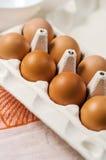Frische braune Eier im Karton Lizenzfreie Stockfotografie