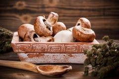 Frische braune Pilze lizenzfreie stockfotografie