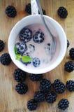 Frische Brombeeren und Jogurt Stockbilder