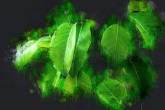 Frische bunte grüne Birnenblätter Stockfoto