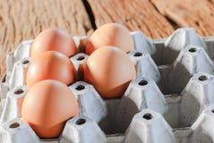 Frische Eier im Eikasten Lizenzfreie Stockbilder