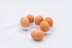 Frische Eier im Kasten Lizenzfreies Stockfoto