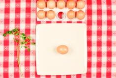Frische Eier und Petersilie Lizenzfreies Stockfoto