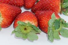 Frische Erdbeere Lizenzfreies Stockbild