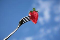 Frische Erdbeere auf einer Gabel gegen blauen Hintergrund Lizenzfreie Stockbilder