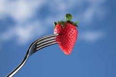 Frische Erdbeere auf einer Gabel gegen blauen Hintergrund Lizenzfreies Stockbild