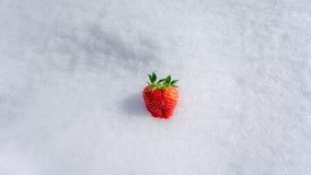 Frische Erdbeere auf Schnee Lizenzfreie Stockbilder