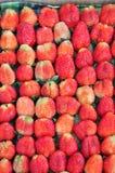 Frische Erdbeere des Bauernhofes Stockfotos