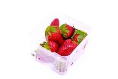 Frische Erdbeere getrennt Stockbild
