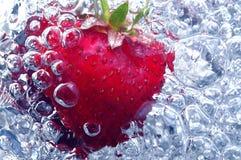 Frische Erdbeere im Wasser Stockfoto