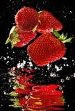 Frische Erdbeere im Wasser Stockbild