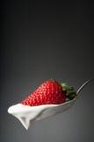 Frische Erdbeere und Joghurt Lizenzfreies Stockbild