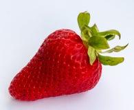 Frische Erdbeere zeigt Bioprodukte und saftiges an Stockbild
