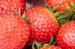 Frische Erdbeeren. Stockbild