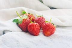 Frische Erdbeeren auf Gewebehintergrund Stockfotografie