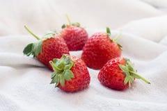 Frische Erdbeeren auf weißem Gewebehintergrund Stockfotos