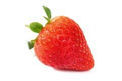 Frische Erdbeeren auf Weiß Stockbilder