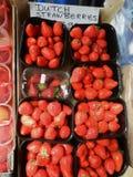 Frische Erdbeeren bereiten für Verbrauch vor stockbild