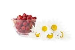 Frische Erdbeeren in einem Glas mit Sahne und im camom Stockbild