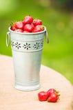 Frische Erdbeeren im Blecheimer Stockbild