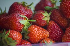 Frische Erdbeeren im Haufen Lizenzfreie Stockfotos