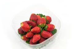 Frische Erdbeeren im Kasten Lizenzfreie Stockfotografie