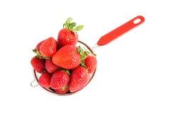 Frische Erdbeeren im Sieb lokalisiert über Weiß Lizenzfreie Stockfotografie