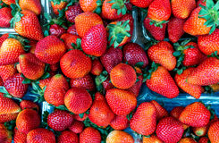 Frische Erdbeeren am Markt Stockbild