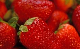 Frische Erdbeeren sind süß nahrhaft, geschmackvoll und lizenzfreie stockfotografie
