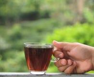 Frische Erdbeeren und Tee auf Porzellanporzellantellern Stockfotos