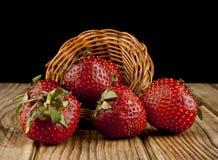 Frische Erdbeerfrucht auf einem Holztisch lokalisiert auf einem Schwarzen Stockfotos