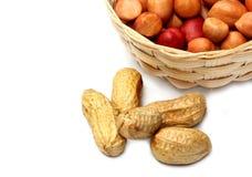Frische Erdnüsse Stockbilder