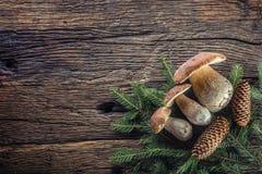 Frische essbare Pilze des Boletus mit geziertem Bündel und Kegel auf rustikalem woden Tabelle Stockbilder