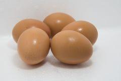 Frische fünf Eier Stockfotos