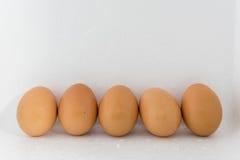Frische fünf Eier Stockfoto