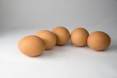 Frische fünf Eier Stockfotografie