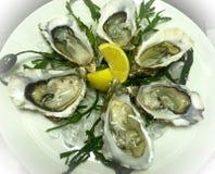 Frische feine Austern de Clair auf Eisbett mit Zitrone lizenzfreie stockfotos