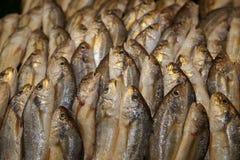Frische Fische. stockfotografie
