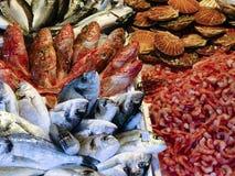 Frische Fische Stockfoto