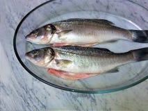 Frische Fische auf einem Marmor stockbild