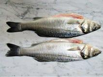 Frische Fische auf einem Marmor stockfotografie