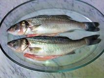 Frische Fische auf einem Marmor lizenzfreie stockfotos