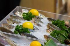 Frische Fische auf Eis mit Zitrone Lizenzfreies Stockfoto