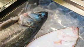 Frische Fische auf zerquetschtem Eis stockbild